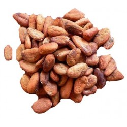 Raw cacao beans whole